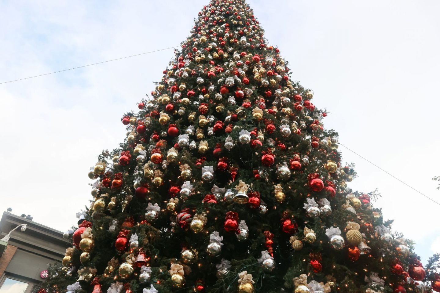 the grove christmas tree